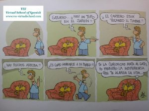 Spanish vocabulary: la curiosidad mata al gato